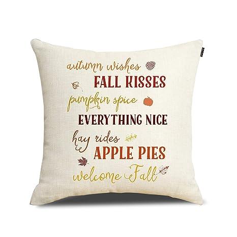 Amazon.com: Fundas de almohada de calabaza para decoración ...