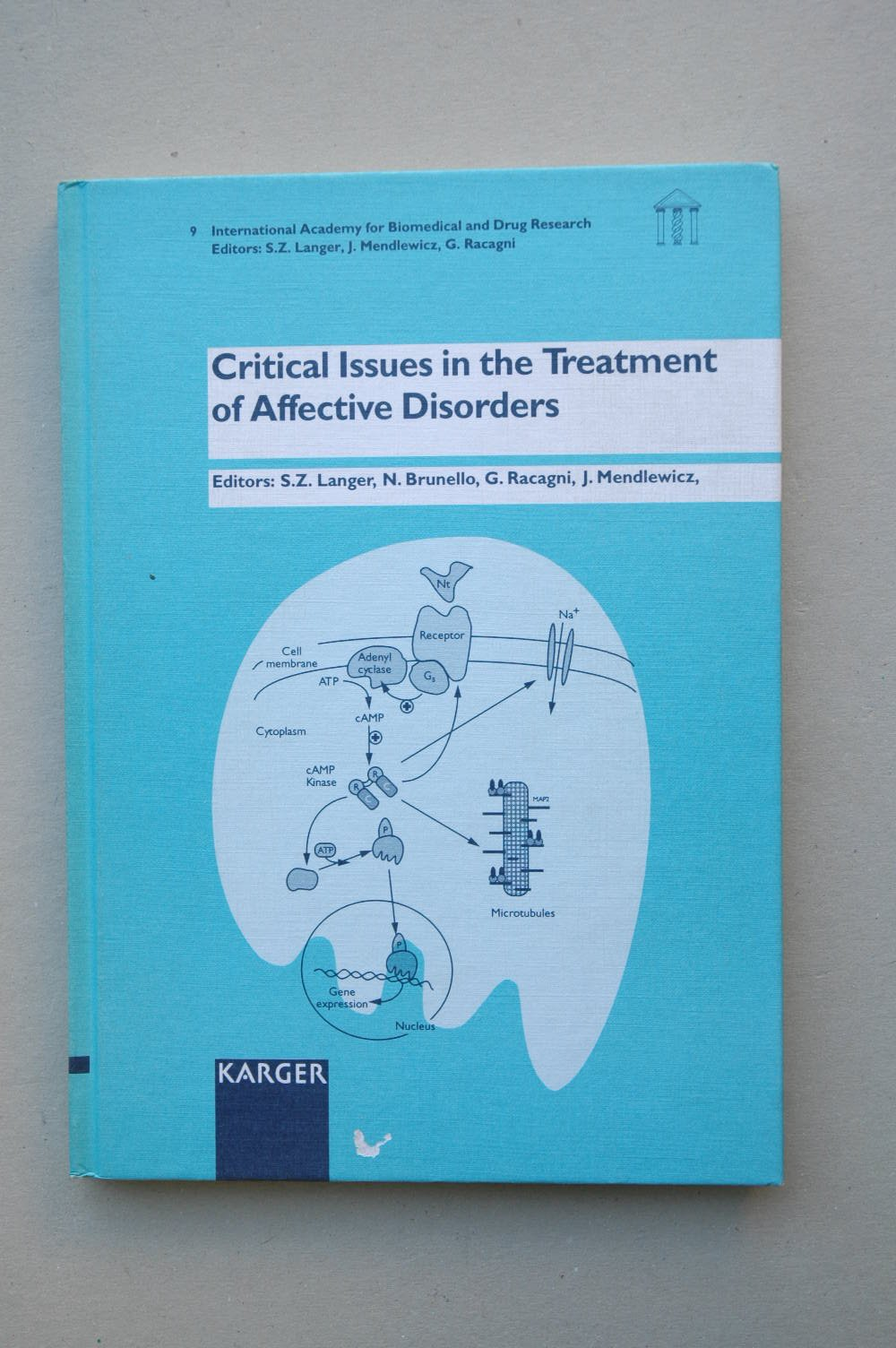 Critical Issues in the Treatment of Affective Disorders: Collegium Internationale Neuro-Psychopharmacologicum (C.I.N.P.), Regional Workshop, Paris, ... for Biomedical and Drug Research, Vol. 9)