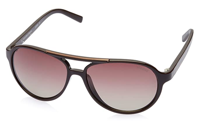 5e64600bdd Image Unavailable. Image not available for. Colour  Calvin Klein Aviator  Sunglasses (Brown) (CK7849SP