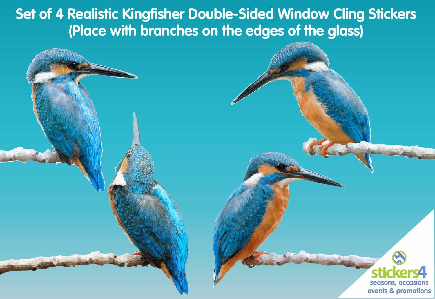 NEW! Set of 4 Photorealistic, Double-Sided, Kingfisher Window Cling Stickers - Beautiful Anti Collision Bird Strike Window Stickers - Fast UK Delivery! Stickers4