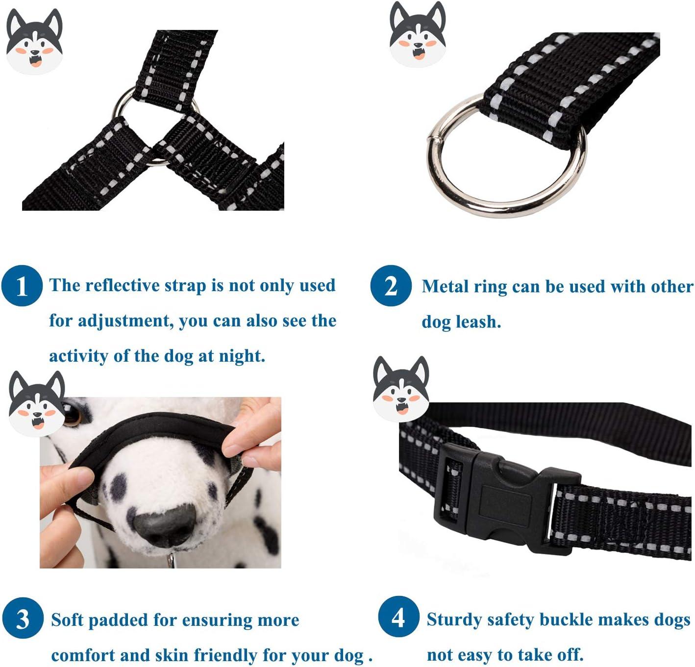 ILEPARK Hundehalfter Mit Reflektierendem Riemen Halfterhalsband F/ür Hunde Verstellbar Und Einfach Zu Kontrollieren.