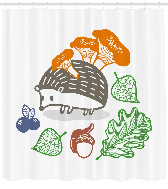 Amazon com: Ambesonne Hedgehog Shower Curtain, Colorful Hedgehog