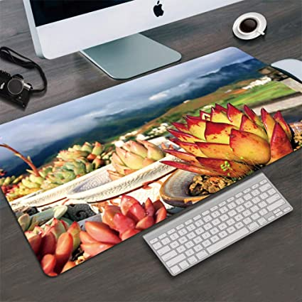 57ae17e81cf47 Amazon.com : Tzsysb Potted Flower Pattern Fashion Mouse pad Large ...