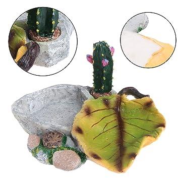 Hergon - Comedero de tortuga repelente, cuenco de alimentación de agua y alimentos, resina, para acuario, pecera, decoración para el hogar y el jardín: ...