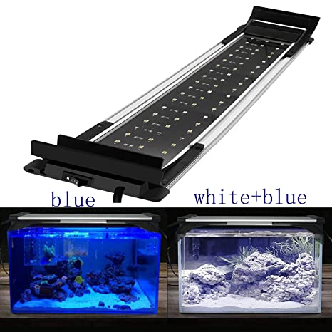 Luces para pecera, de Mpanda; luces LED de dos colores (azul y blanco