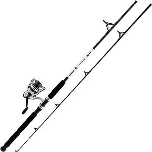 Daiwa D-Wave Spinning Combo Rod