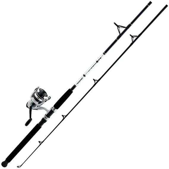 Review Daiwa D-Wave Saltwater Spinning
