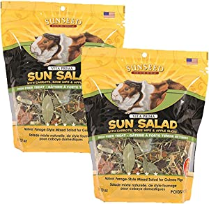 Vitakraft Vita Prima Sun Salad Treat for Guinea Pigs, 20 oz
