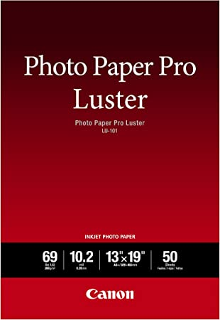 Canon Photo Paper Pro Platinum 10 Sheets 13 x 19 Inches 2768B018 *New*