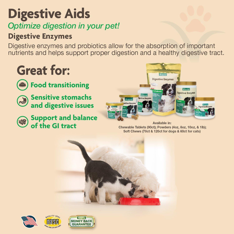 Amazon Naturvet Digestive Enzymes Plus Probiotic For Dogs 70