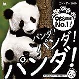 パンダ! パンダ! パンダ! カレンダー 2020 (翔泳社カレンダー)