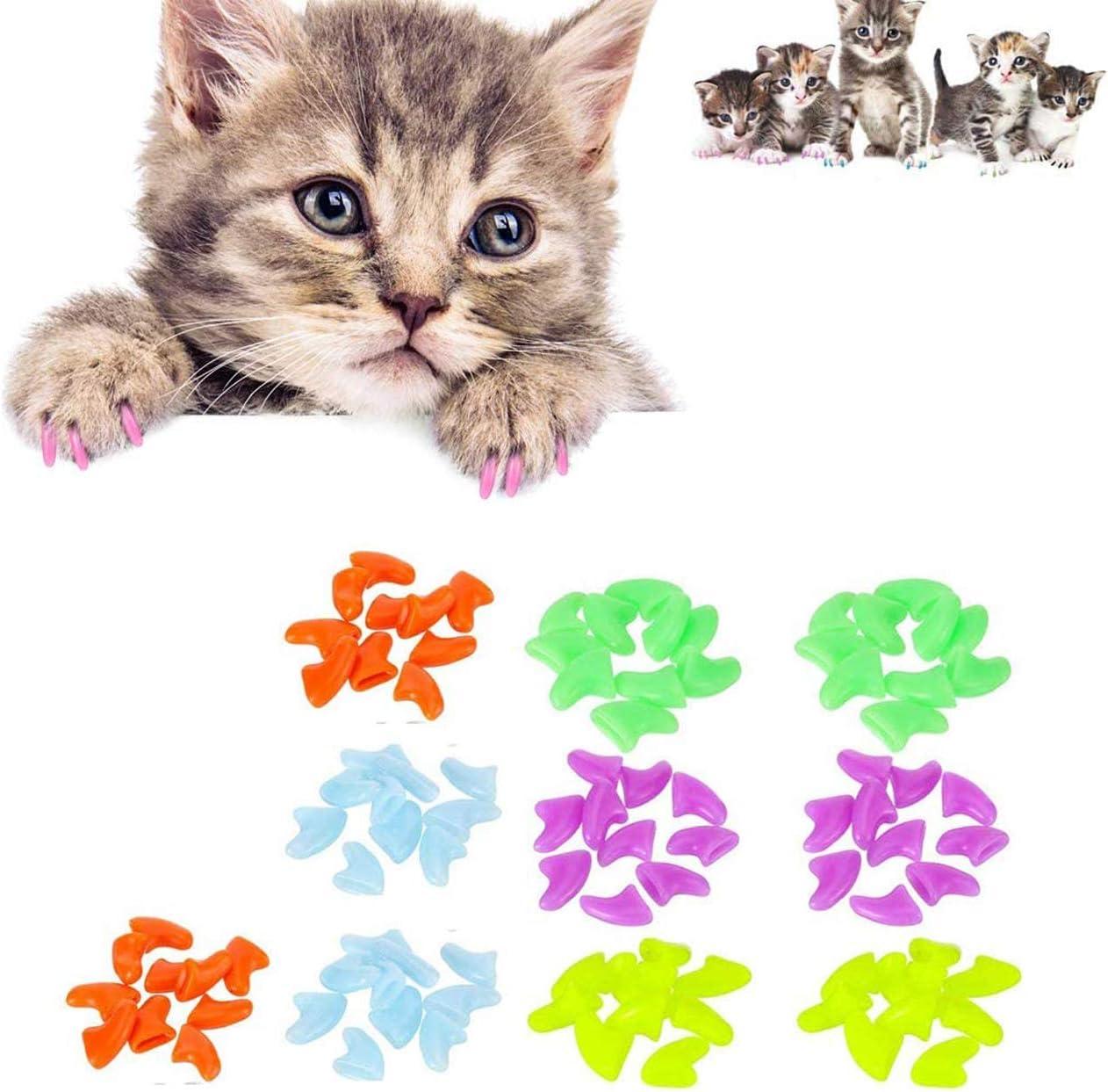Tapas de garra de gato de Vicport, gatos, patas, arreglos de uñas, tapas de uñas para mascotas y gatos (100 unidades): Amazon.es: Productos para mascotas