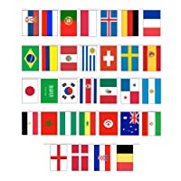 GrassVillage MEGA VALUE World Cup Bunting Russia 2018 with all 32 Team Flags 10m/30 FEET Party Decoration Banner Multi Nation Bunting by
