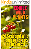 Edible Wild Plants: 20 Seasonal Wild Foods to Forage In The Forest