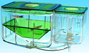 Penn-Plax AN2 Aqua Nursery and Hatchery Aquarium
