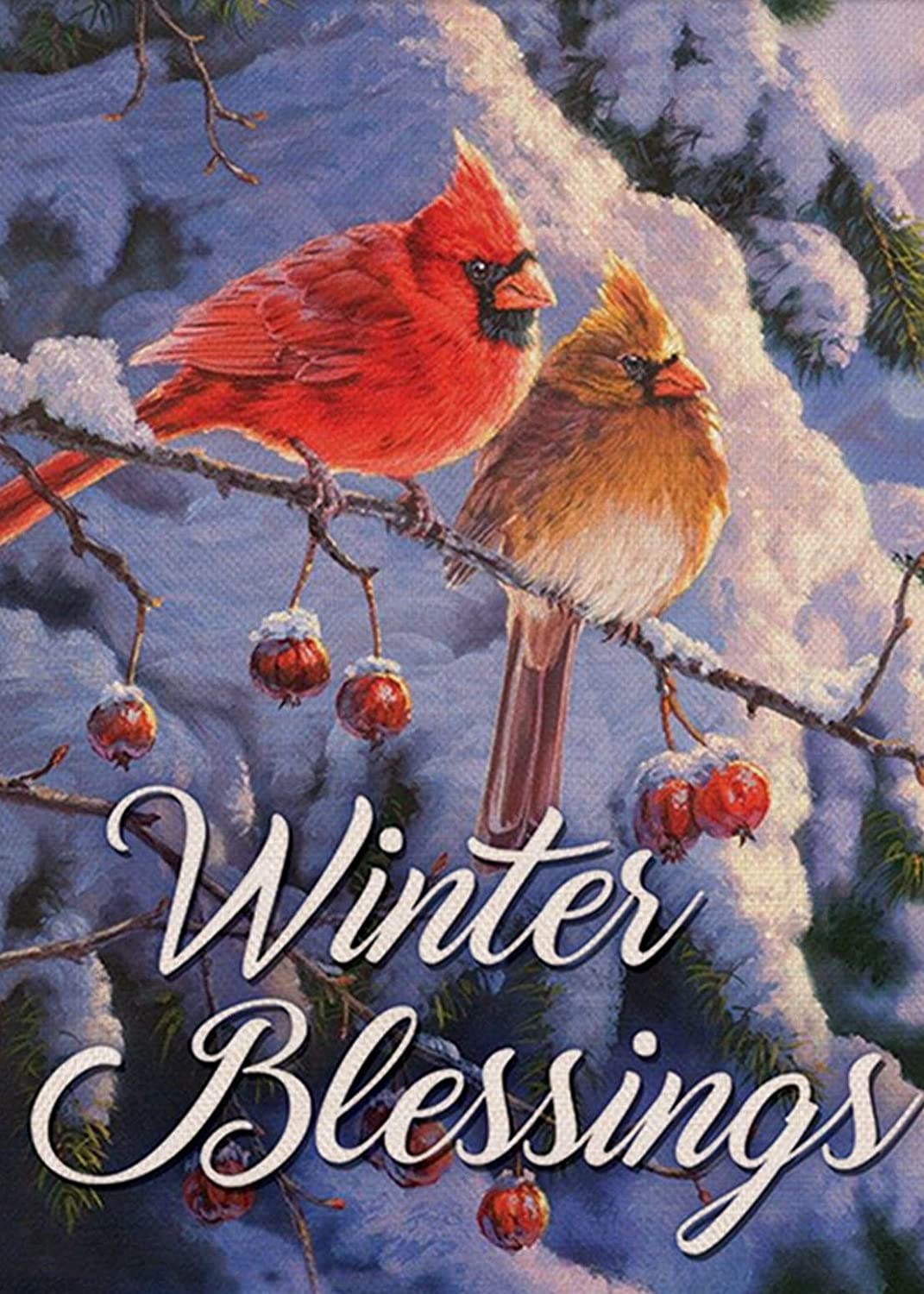 Furiaz Winter Blessings Garden Flag Cardinals, Snowy Home Decorative House Yard Small Flag Birds Welcome Decor Sign Double Sided, Christmas Holiday Outdoor Decorations Xmas Seasonal Outside Flag 12x18