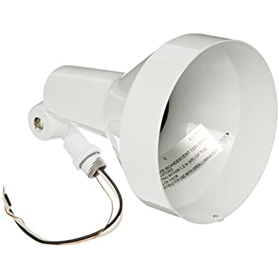 RAB Lighting H101W Landscape Bell Shaped H System Par Flood, PAR38 Type, Aluminum, 150W Power, White - Incandescent Lamps - .com