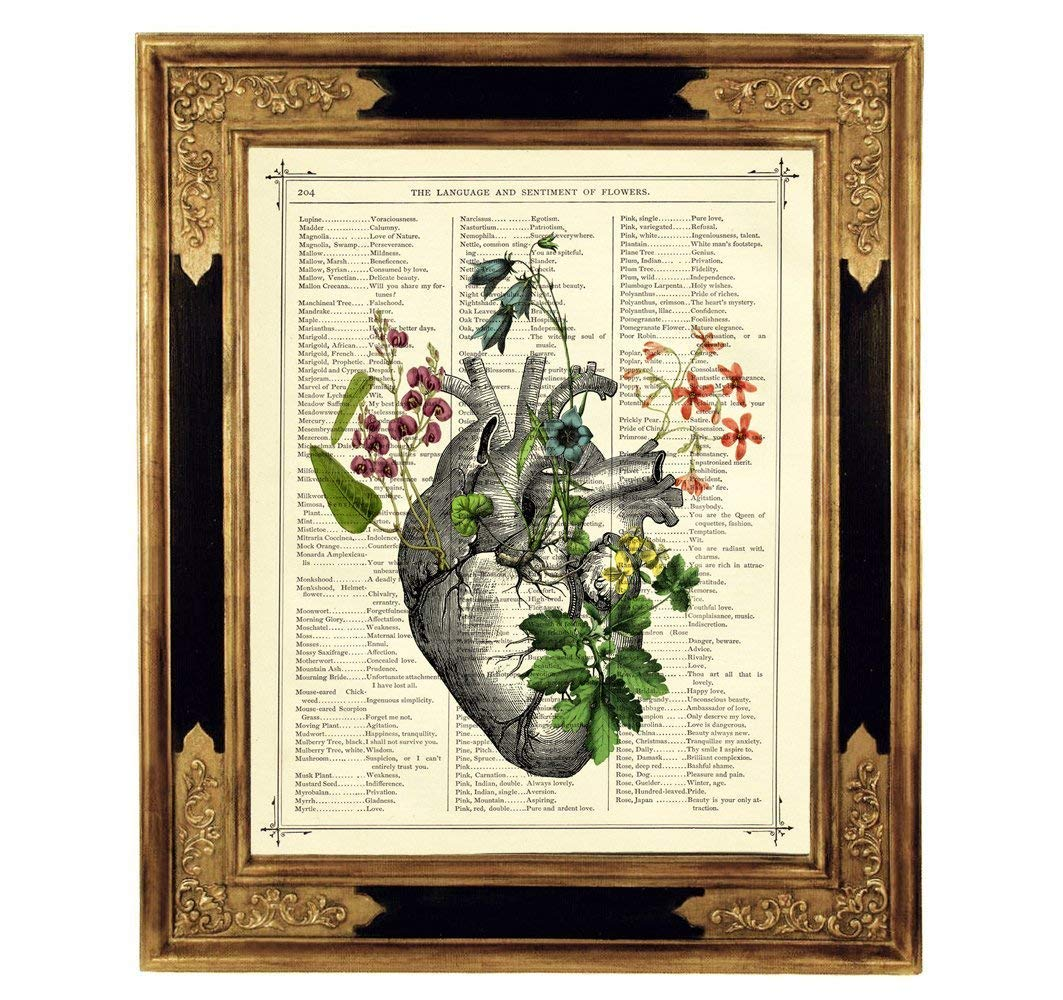 Anatomisches Herz Blumen II Steampunk Kunstdruck auf antiker Buchseite Liebe Gothic Geschenk Hochzeit Valentinstag Bild Poster ungerahmt