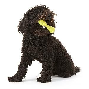 Westpaw Zogoflex Hurley Chew Toy