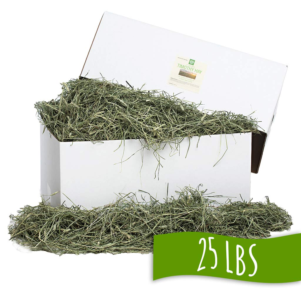 Small Pet Select 25-Pound 2Nd Cutting Timothy Hay Pet Food, Green by Small Pet Select