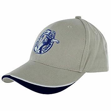 Gorra de Béisbol Bordada para Adulto Millwall FC (100% Algodón y Ajustable) 1eceb38cb37