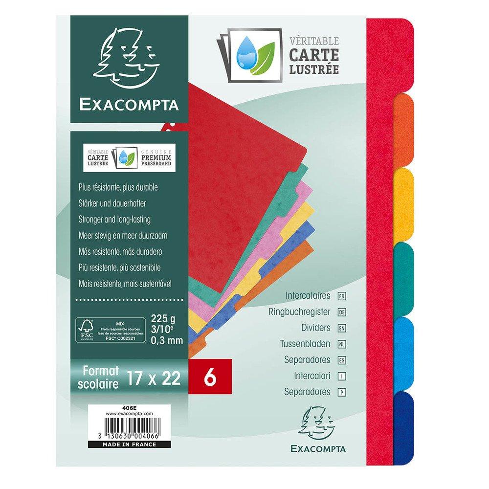 Exacompta Register A4 Maxi Manila-Karton 225g 12-teilig blanko farbig