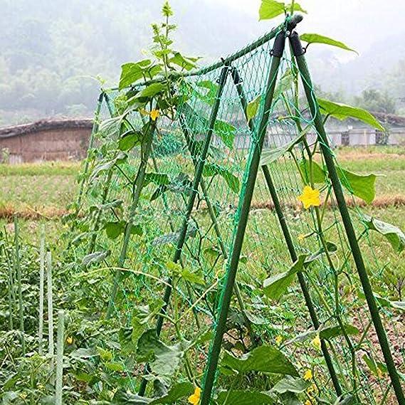 Ranknetz Rankhilfe Pflanzennetz Gartennetz Stütznetz Planzenstütze 9 Größen