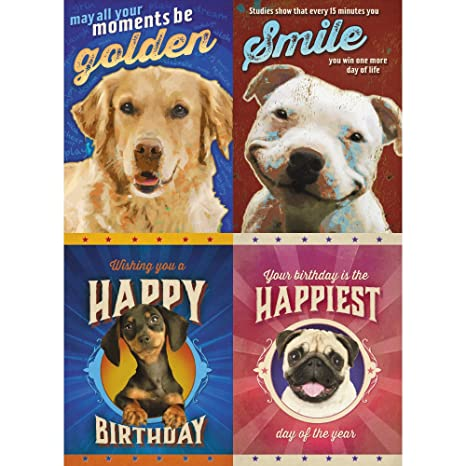 Amazon Tree Free Greetings Happy Dogs Birthday Card Assortment