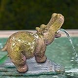 TOTAL POND A16541 TotalPond Hippo Pond Fountain