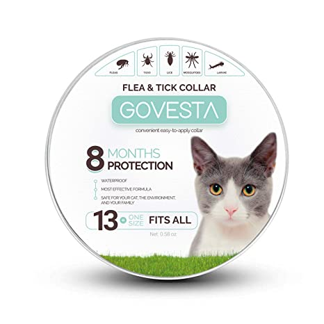 Amazon.com: Collar Govesta para perros y gatos – Control y ...