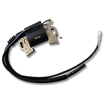 LIFAN Repuesto Bobina de encendido ignición gasolina motor 6, 5 CV recambio pieza: Amazon.es: Jardín