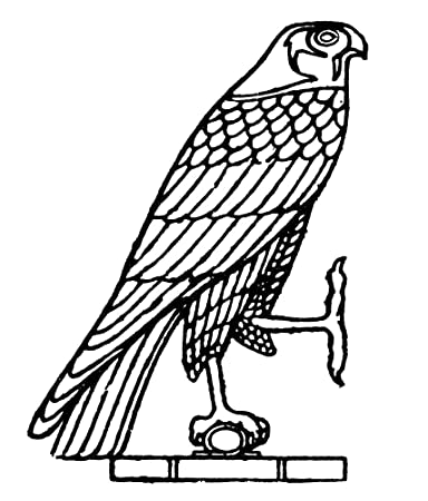 Amazon Egyptian Symbol Falcon Nthe Falcon An Ancient