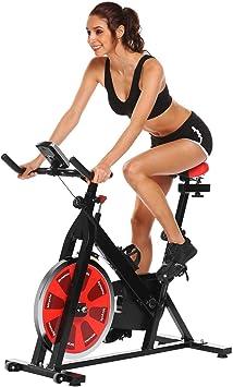 dtemple Indoor cycling Bike bicicleta estática magnética de salud ...
