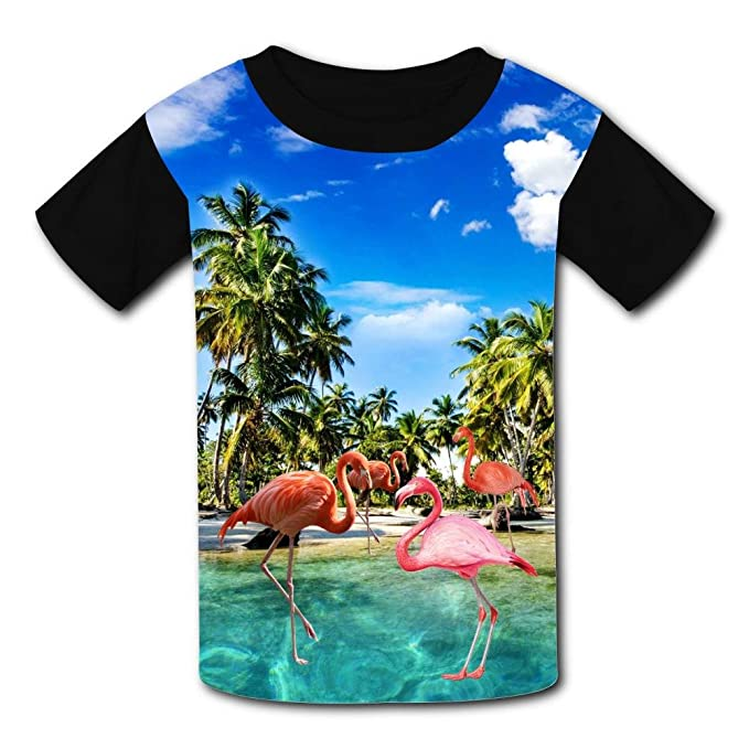 9c6158f768d0 Amazon.com  Kids Summer Vacation Flamingo Summer Casual Short Sleeve Tee  Creative 3D Printed Graphic Hipster Design T Shirt  Clothing