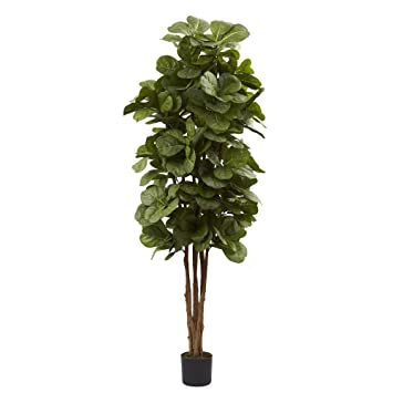 Nearly Natural 5346 Fiddle Leaf Fig Tree, 6 Feet, Green