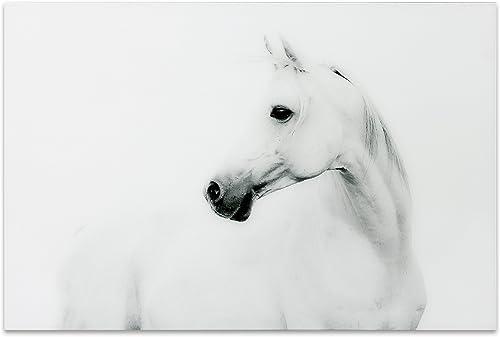 Empire Art Direct White Horse 2 Frameless Tempered Glass Black and White Wall Art
