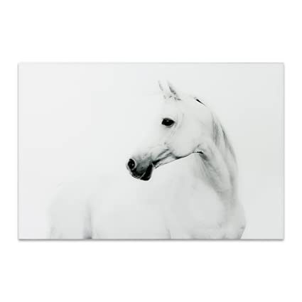 Empire Art Direct White Horse 2 Frameless Tempered Glass Black And White Wall Art 48 X 32 X 0 2 Ready To Hang