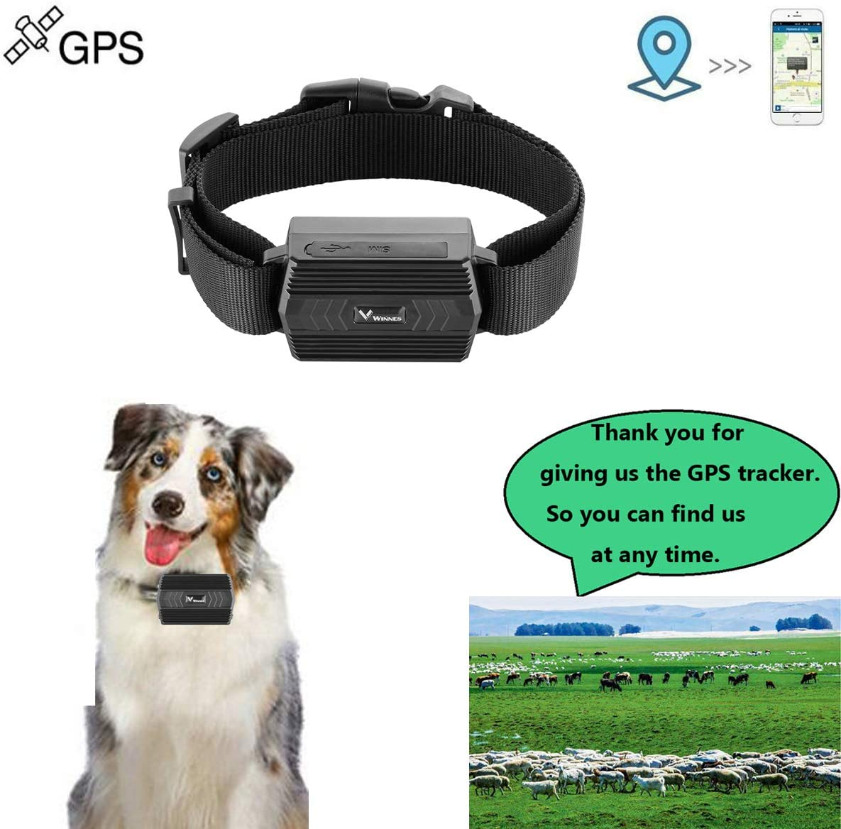 2G, SIM Not Included Waterproof Real Time GPS Tracker Locator with Collar for Cattle Cow Sheep Horse Camel 90 Days Long Standby Time Support APP GPS Tracker for Large Animals