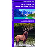 Field Guide to Banff National Park: A Folding Pocket Guide to Familiar Plants & Animals (Wildlife and Nature…