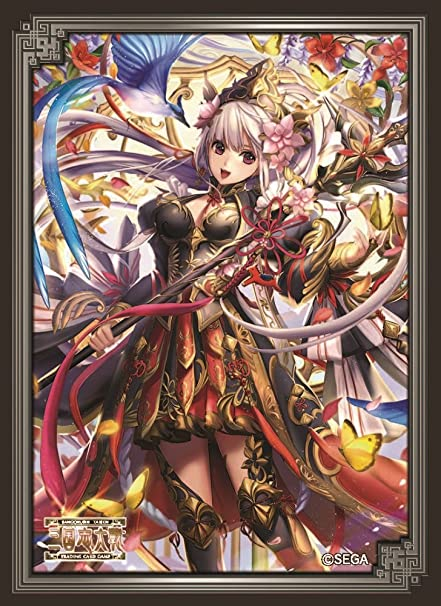 Amazon.com: Lu Princesa Sangokushi Taisen Juego de cartas ...