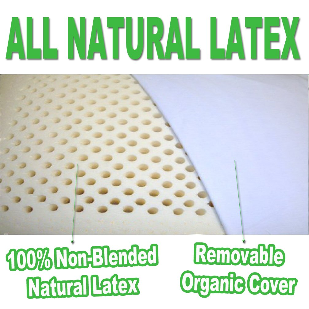 2-Pack All Natural Latex Pillow with Organic Cotton Washable Outer Covering
