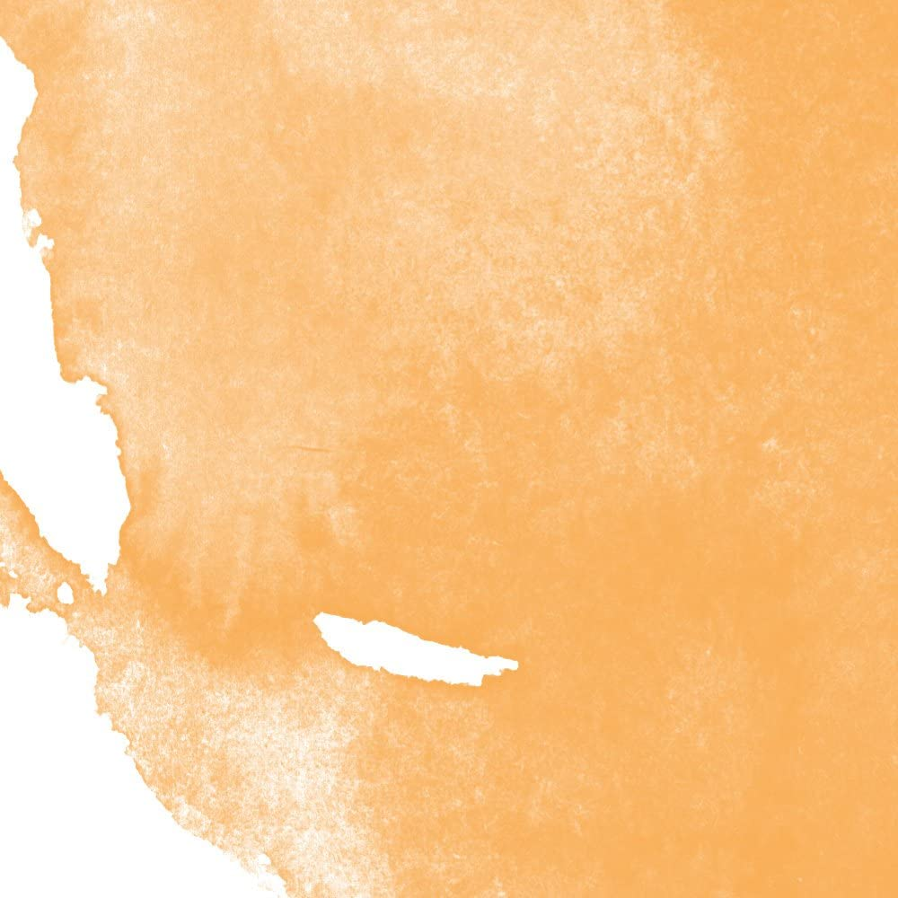 Jacquard Pinata Farbe auf Alkohol-Basis 1//2 oz Havana Brown Braun