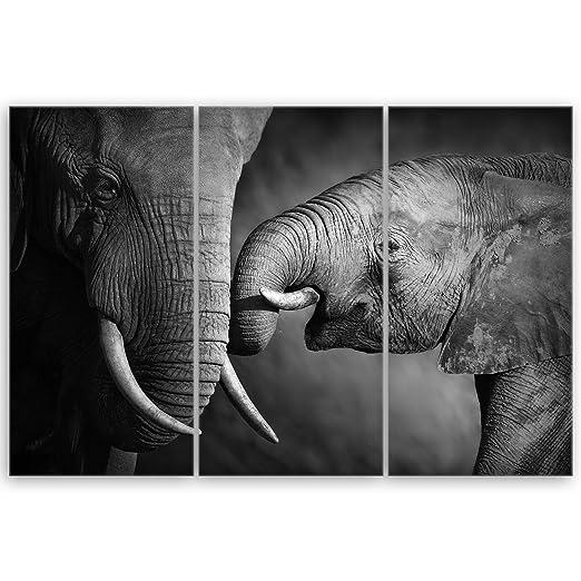 Ge Bildet Hochwertiges Leinwandbild Elefanten Schwarz Weiss 90
