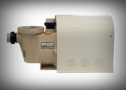 Amazon.com : Pentair Intelliflo Pump Motor Cover - Variable ...