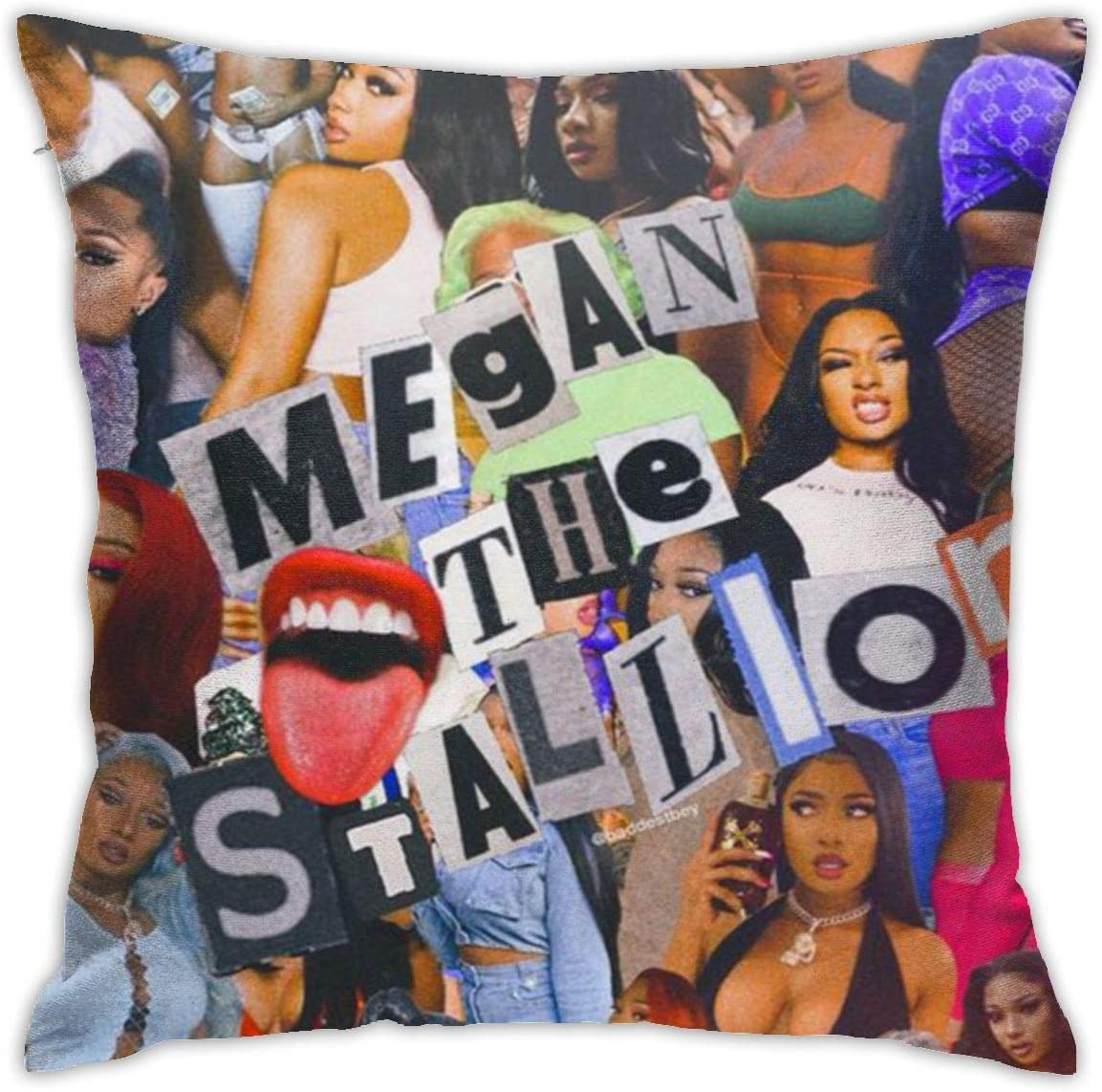 JINZH Megan Thee Stallion Decorate Bed Pillowcase Comfort for Men Women Teens Home Car Cushion Cover