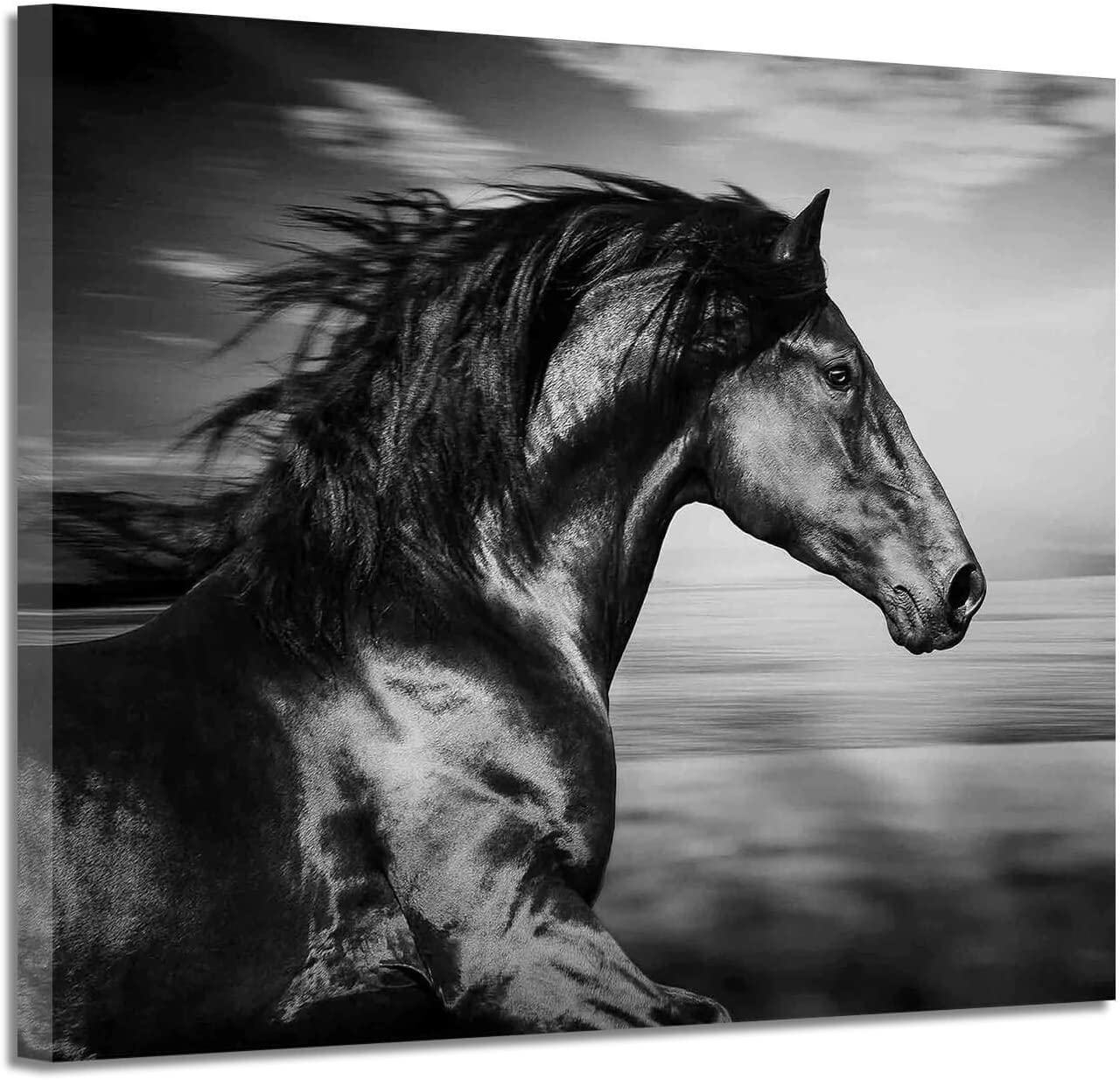 Black Horse Canvas Picture Prints: Wild Animal Painting Art Artwork on Canvas for Office (24