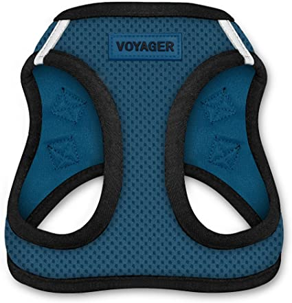 All Weather Mesh Step In Vest Harness for Small and Medium Dogs by Best Pet Supplies XXXS 207-BUB-XXXS Chest: 9.5-10.5 * Fit Cats Blue Base Voyager Step-In Air Dog Harness
