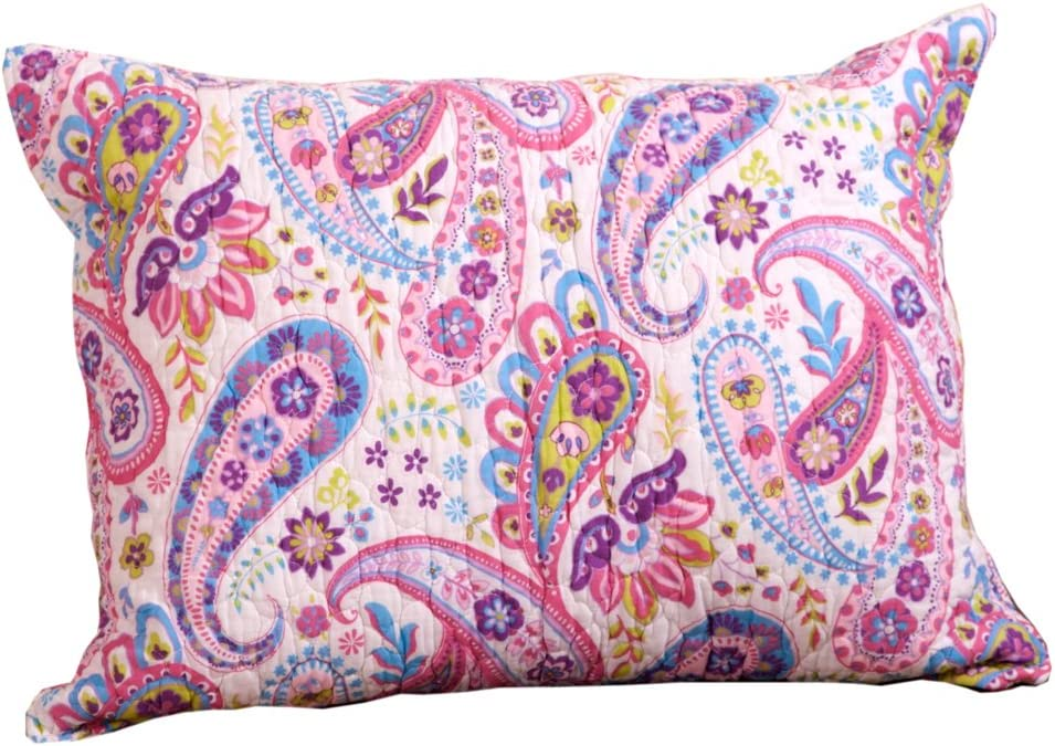 Colorful Pony Paisley Pillow Sham