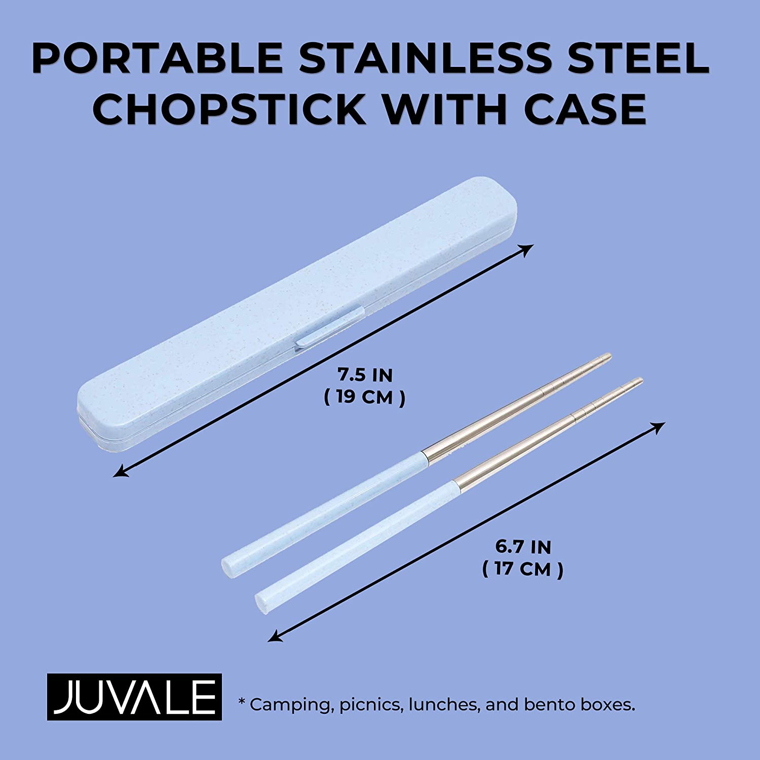 Portable Stainless Steel Chopstick with Case 7.5 in, Blue