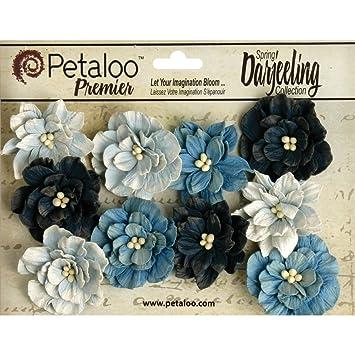 Petaloo Papier Darjeeling tearstained Dahlia Blumen 10-blue: Amazon ...